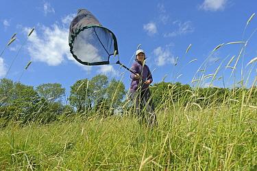 RSPB research ecologist Chloe Hardman using sweep net to sample invertebrate populations, RSPB Hope Farm reserve, Cambridgeshire, England, UK, May. Model released. 2020VISION Book Plate.