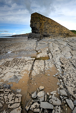 Minor normal or extensional faults exposed in the cliffs and also on the shore wave-cut platform. Nash Point, South Glamorgan Heritage Coast, Llantwit Major, Wales, UK. September 2017. The cliffs com...