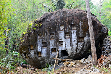 Rock at Toraja cemetery, Tana Toraja. Toraja is an ethnic group in West and South Sulawesi. The culture revolves around death with funeral ceremonies an important part of daily life. Indonesia. 2015.
