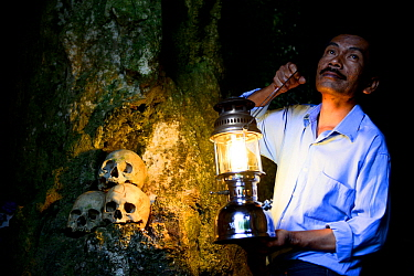 Man with lantern lighting up skulls on rock at Toraja cemetery. The Toraja culture of West and South Sulawesi revolves around death with funeral ceremonies an important part of daily life. Indonesia....