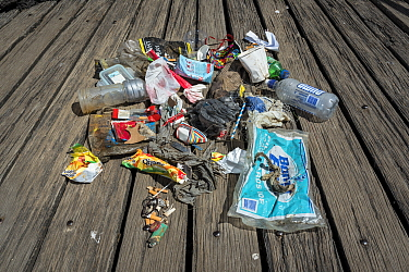 Rubbish found by one volunter during monthly Little penguin (Eudyptula minor) colony nesting clean up. St Kilda breakwater, Melbourne, Victoria, Australia. 2018.