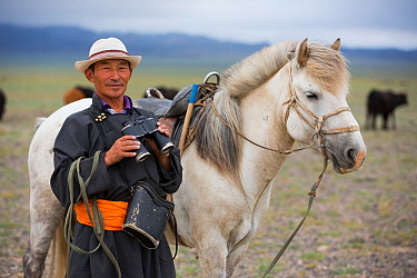 Shepherd with binoculars standing next to horse, looking for cattle. Cattle compete for food with reintroduced Przewalski horse (Equus ferus przewalskii). Great Gobi B Strictly Protected Area, Mongoli...