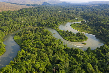Meanders of Mpassa river surrounded by rainforest, savanna beyond. Location of Western lowland gorilla (Gorilla gorilla gorilla) reintroductions through Gorilla Protection Project. Bateke Plateau Nati...