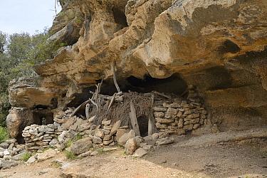 Shepherd's shelter under limestone rock overhang. Bacu Goloritze ravine, Gennargentu National Park, Baunei, Sardinia, Italy. May 2018.
