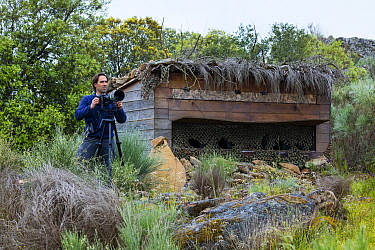 Man with camera on tripod beside bird hide. Faia Brava Reserve. Archaeological Park of the Coa Valley, Western Iberia, Portugal. April 2016.