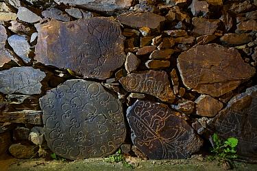 Engraving in rock. Ruta dos Namorados, Castelho Melhor, Archaeological Park of the Coa Valley, Western Iberia, Portugal. 2016.