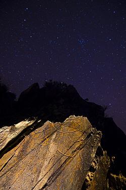 Palaeolithic rock art of Horses, under night sky. Penascosa Archaeological Site, Castelho Melhor, Archaeological Park of the Coa Valley, Western Iberia, Portugal. 2016.