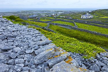 Dun Chonchuir Fort, Inishmaan, Aran Islands, County Galway, Ireland. May 2011.