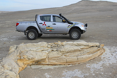 Fossilized whale, next to vehicle to show scale, in desert near Ica, Peru.