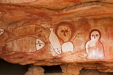 Wandjina style Aboriginal rock art, depiction of people and fish. Raft Point, Doubtful Bay, The Kimberley, Western Australia. 2016.