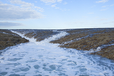 Water starting to run off the reef with ebbing tide. Doubtful Bay, The Kimberley, Western Australia