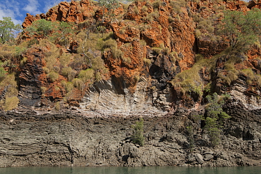 Banded and folded rock on cliff beside Cyclone Creek. Talbot Bay, The Kimberley, Western Australia.