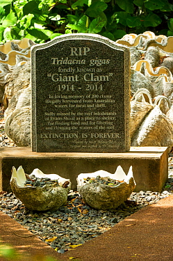 Tombstone for 200 Giant clams (Tridacna gigas) illegally harvested in and around Evans Shoal, Darwin. Northern Territory, Australia. 2017.