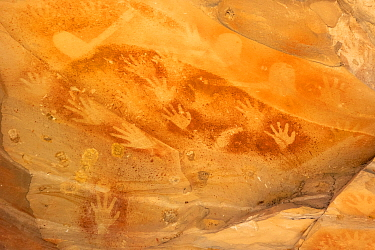 Stencilled handprint rock art. Baloon Cave, Carnarvon Gorge, Carnarvon National Park, Queensland. 2014.