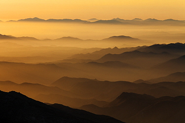 Hills silhouetted in evening mist. Sierra de San Pedro Martir National Park, Baja California Peninsula, Mexico. 2011.