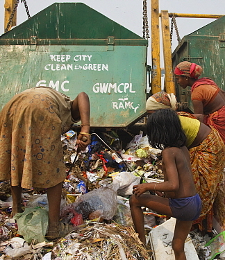 People picking through rubbish from newly arrived skips on landfill site. Guwahati, Assam, India. 2009.