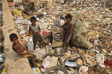 Three boys standing amongst rubbish, residents of landfill site. Guwahati, Assam, India. 2009.