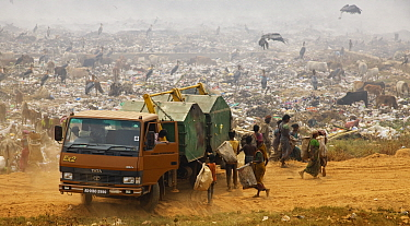 Inhabitants of landfill site gathering around at arrival of new skips. Guwahati, Assam, India. 2009.