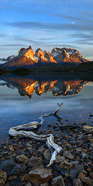 Shore of Lago Pehoe at sunrise, Central Massif and towers of Torres del Paine National Park reflected in lake. Patagonia, Chile. November 2018.