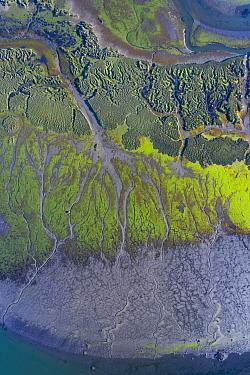 Estuary and tidal marsh at low tide, aerial view. Santona, Victoria and Joyel Marshes Natural Park, Cantabria, Spain. May 2019.