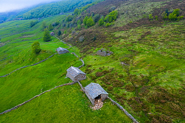Cabanas Pasiegas and stone walls bordering fields at base of scrubby slope, aerial view. Portillo de La Sia, Soba Valley, Valles Pasiegos, Cantabria, Spain. May 2019.