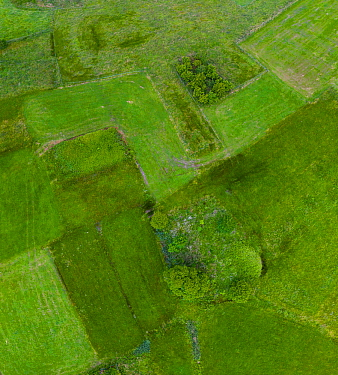 Patchwork of small fields, aerial view. Liendo Valley, Montana Oriental Costera, Cantabria, Spain. June.