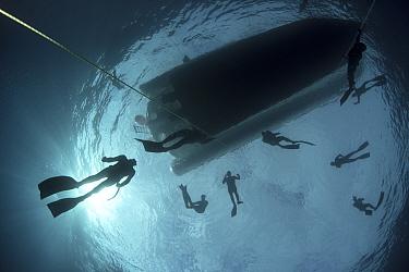 People learning to freedive in Atlantic Ocean, Tenerife, Canary Islands. 2015.