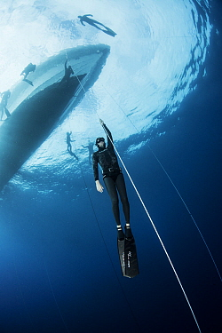 Person holding on to rope, practising freediving, boat and more divers at surface. Tenerife, Canary Islands. 2015.