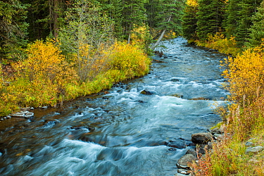 Water flowing out of the Hyalite Resevoir, Hyalite Creek, Gallatin National Forest, Bozeman, Montana, USA. September.