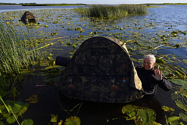 Photographer Katja Ronkainen in water with floating hide, Nemunas Delta Nature Reserve, Lithuania.