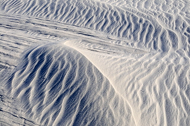 Irregular ripples on gypsum sand dunes created by high winds, White Sands National Park, Chihuahuan Desert, New Mexico, USA, December 2012.
