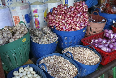 Onions, Garlic and Shallots (Allium spp) in plastic baskets on market stall, Bangkok food market, Thailand. 2015.