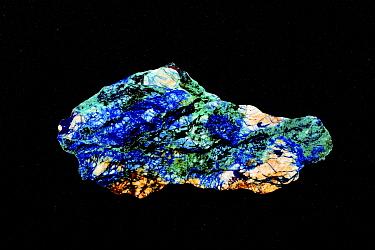 Azurite-malachite rock slab, cut and polished, white quartz with veins azurite and malachite copper minerals, occurs in copper-bearing rocks in central Siberia. Stepnoye Mine, Altay Mountains, Siberia...