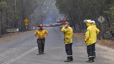 Rural Fire Service volunteers staff a road block, waiting for heavy machinery to help clear the road. The surrounding forest was burned during the December 2019 bushfires.