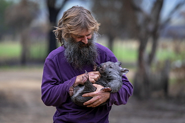Portrait of Joseph Henderson holding a male bare-nosed wombat (Vombatus ursinus(. He and his partner, Rena, had to evacuate the wildlife (wombats, kangaroos and possums) from their home and wildlife s...