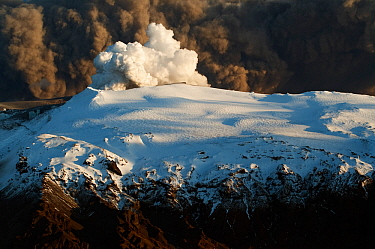 Subglacial volcanic eruption under the Eyjafjallajokull ice cap with ash plume from the volcano above, Iceland, April 2010