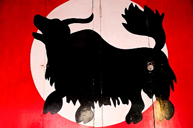 Yak drawn on a door in the city of Leh, Indus Valley, Ladakh, India. September 2011.