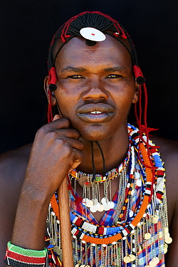 Maasai man adorned with traditional bead work and colour glass pearls around his neck, head portrait. Masai Mara National Reserve, Kenya.