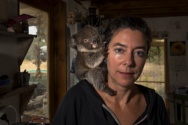 ?Portrait of Kate Welz, a veterinary nurse, wildlife carer and president of the Kangaroo Island Wildlife Network with Piccolo, a rescued baby Koala (Phascolarctos cinereus). American River, Kangaroo I...