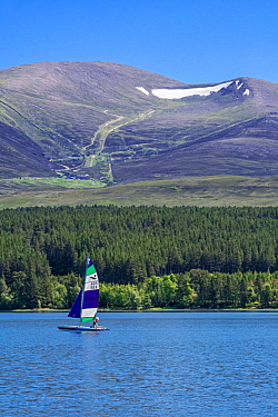 Sailing boat on Loch Morlich in front of the Cairngorm Mountains, Cairngorms National Park, Badenoch and Strathspey, Highland, Scotland, UK. June 2018