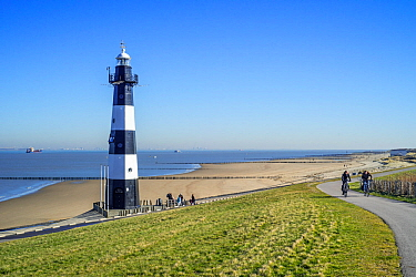 Levee / dyke and Nieuwe Sluis, lighthouse near Breskens which marks the entrance to the Western Scheldt / Westerschelde, Zeeland, the Netherlands, February 2019