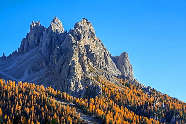 North face of the mountain Cadini di Misurina in autumn / fall in the Sesto / Sexten Dolomites, Belluno, South Tyrol, Italy, October