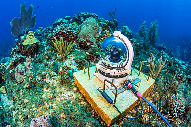 An underwater webcam monitoring a coral reef. Jack McKenney's Canyons. East End, Grand Cayman, Cayman Islands, British West Indies. Caribbean Sea.