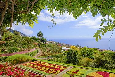 Botanical garden near the coast, Madeira.