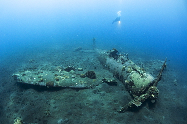 A scuba diver next to the Mitsubishi Zero, Japanese World War Two fighter plane, Kimbe Bay. West New Britain, Papua New Guinea