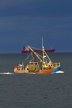 Inshore trawler in shallow coastal sea fishing area , with oil tanker in background, off County Wicklow, Ireland, June.