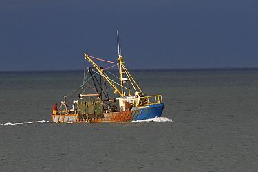 Inshore trawler in shallow coastal sea fishing, County Wicklow, Ireland, June.
