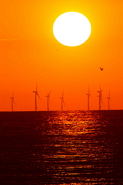 Wind turbines i=out at sea at sunset. County Wicklow, Ireland, June.