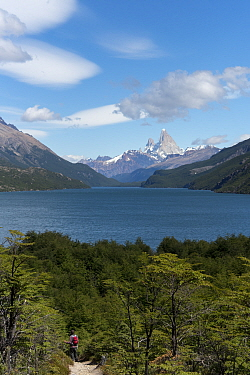 Person hiking along trail between Chile and Argentina, with Fitzroy mountains in the background, Patagonia, Argentina. January 2017.