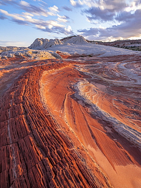 Petrified sand dunes with deeply eroded sinuous striations in sandstone basin. Colorado Plateau, Arizona, USA. September 2019.